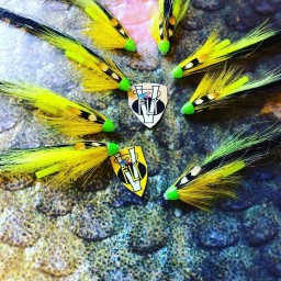 Stor Lax 1 Inch Aaroy Kennedy Yellow Conehead Tube Flies